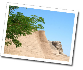 the-ark-bukhara