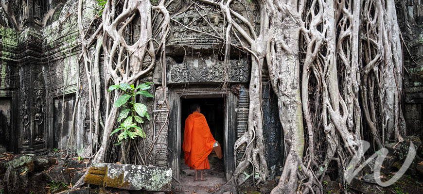 A Monk at Ta Prohm