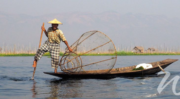 Fisherman on Inle Lake, In Focus Myanmar