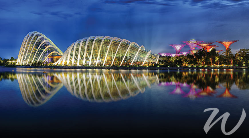 Gardens by the Bay at night. Singapore, gardens by the bay