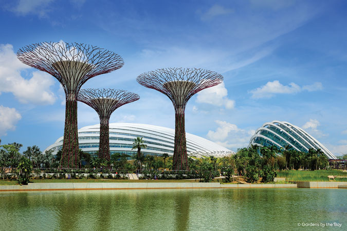 Supertrees and Conservatory (image credit: Gardens By the Bay)