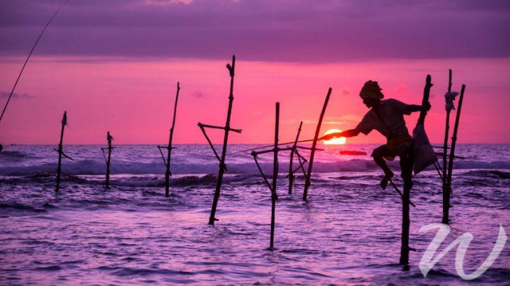 Stilt Fisherman, Focus on Sri Lanka