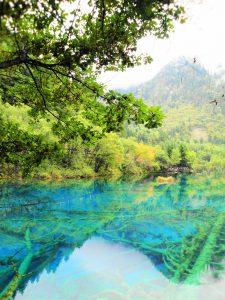Lake in Jiuzhaigou National Park, Customer Corner: Lake in Jiuzhaigou National Park