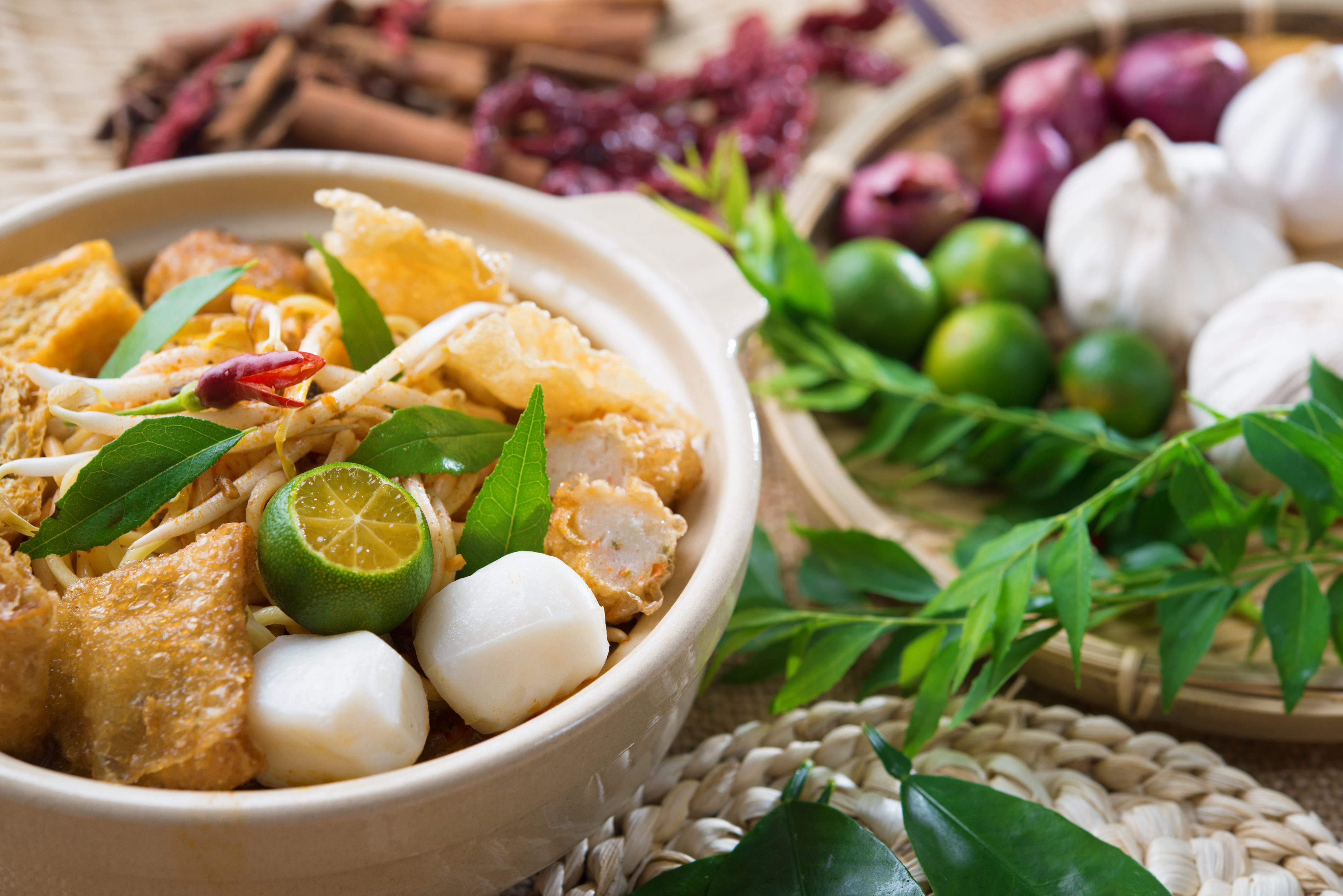 Famous Curry Noodles, Singapore, Hong Kong vs Singapore