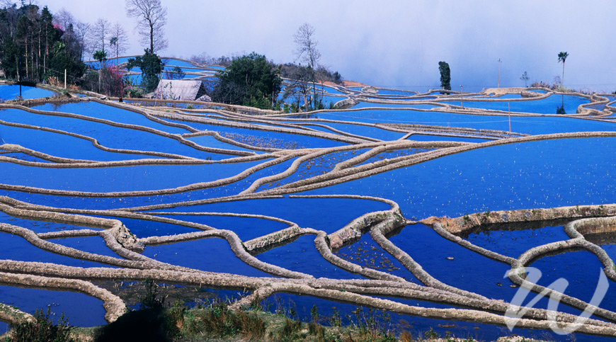 Blue Rice Terraces, Yuanyang, Undiscovered Yunnan