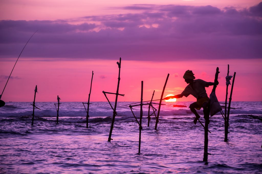 Stilt Fisherman, Sri Lanka, staff hotlist