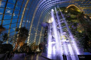 Cloud Forest Waterfall at Night, singapore's gardens by the bay