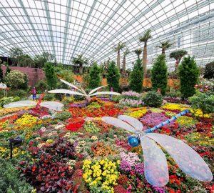 Garden By The Bay Blog get wonderfully lost in singapore's gardensthe bay – wendy wu