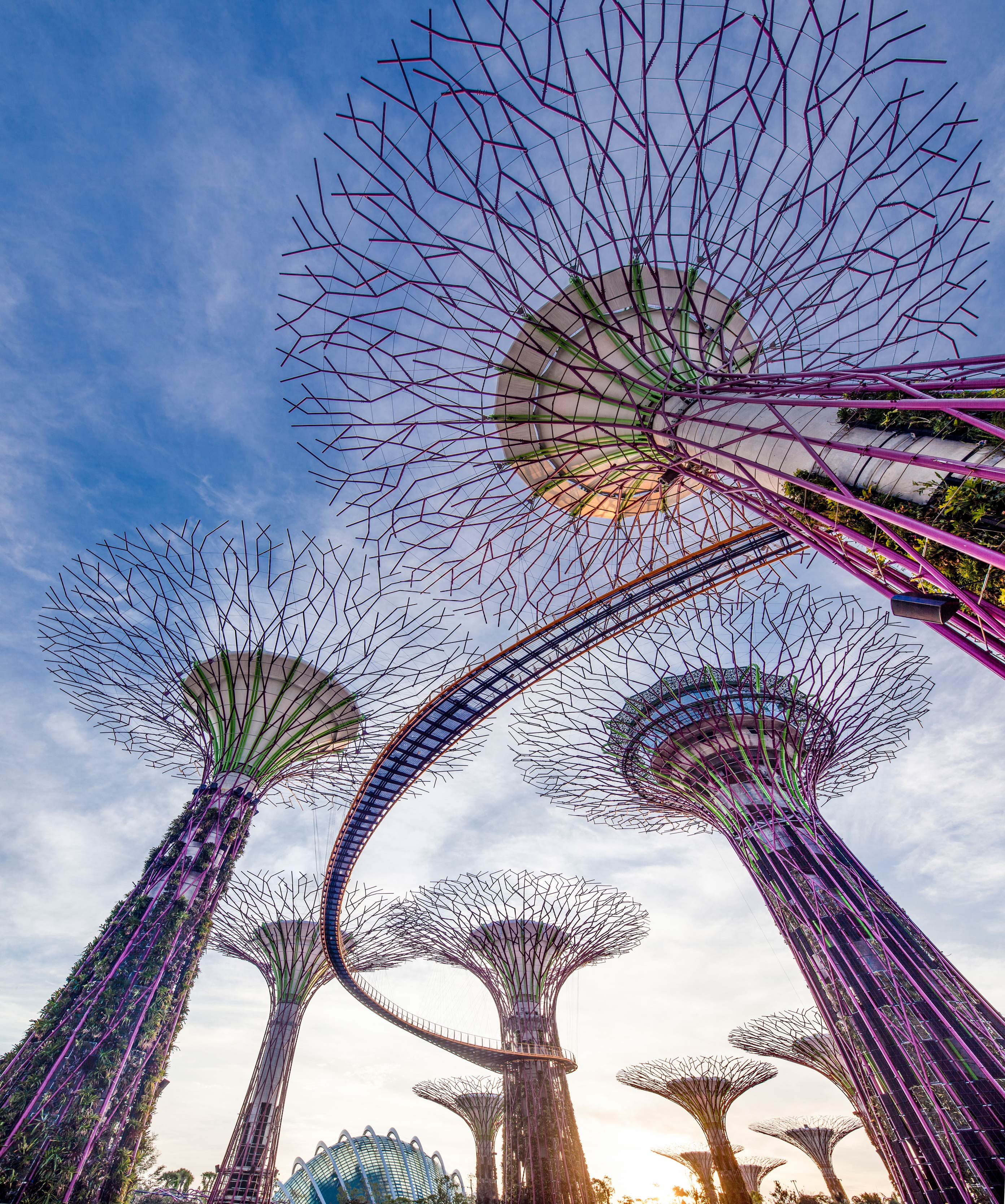 OCBC Skyway singapore's gardens by the bay