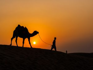Sam Sand Dunes, india's must see