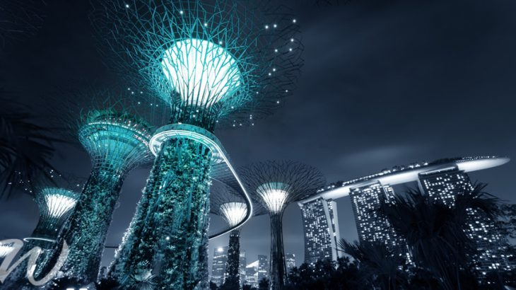Super Tree Grove, singapore's gardens by the bay