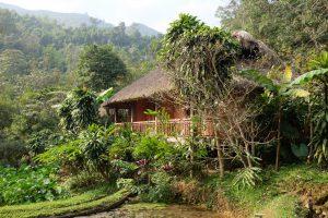 Pan Hou Lodge, Hoang Su Phi