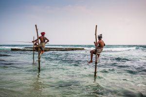 Local Stilt Fishermen, discover sri lanka