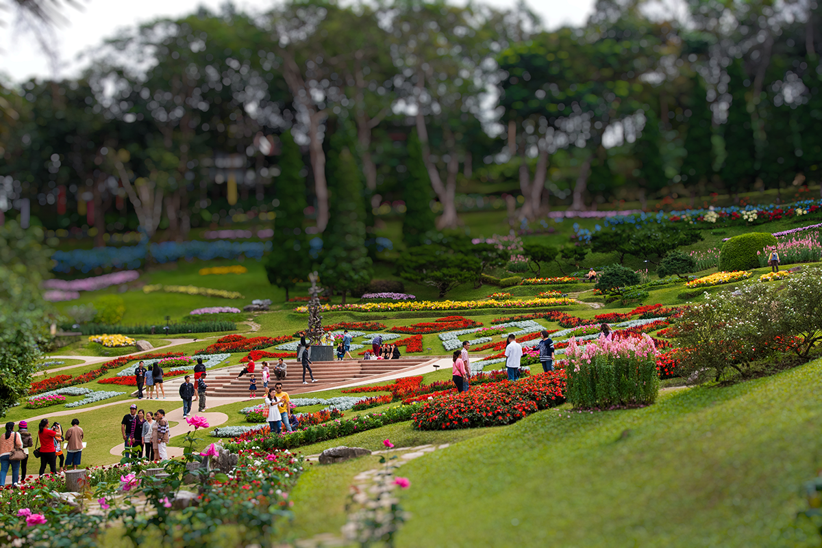 Queen Sirikit Botanic Gardens, Chiang Mai, travel photography
