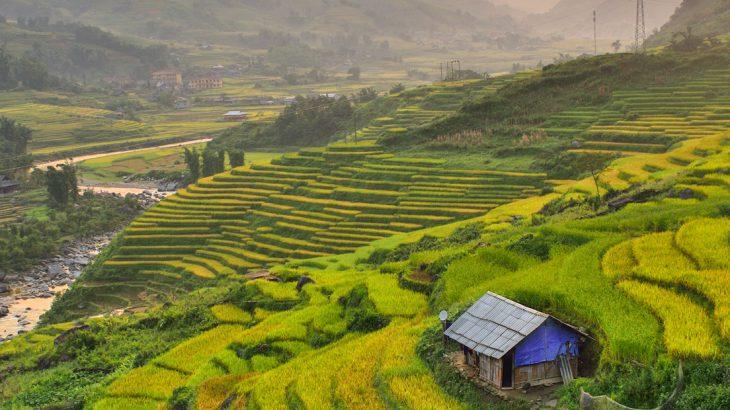 Sapa Vietnam, taste