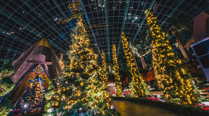 Christmas Trees in Gardens by the Bay, Singapore asia winter