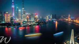 Bright-lights-of-Shanghai, year of the dog
