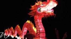 Lantern-festival-xian, year of the dog