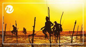 Stilt Fishermen of Weligama