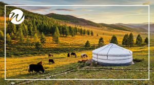 Rolling Steppes of Mongolia, Asia bucket list