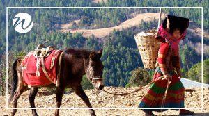 Hui Minority in Yunnan Province, Asia bucket list