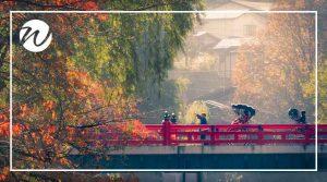 Japan autumn leaves in Takayama