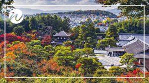 Colour autumn views across Kyoto
