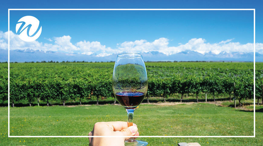 World-class wines in Mendoza