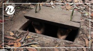 Head into the Cu Chi Tunnels