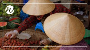 Local produce, Vietnam's markets
