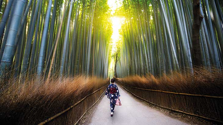 Bamboo groves of Arashiyama, Kyoto