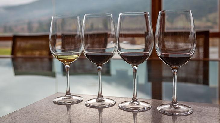Chilean Wine Tasting
