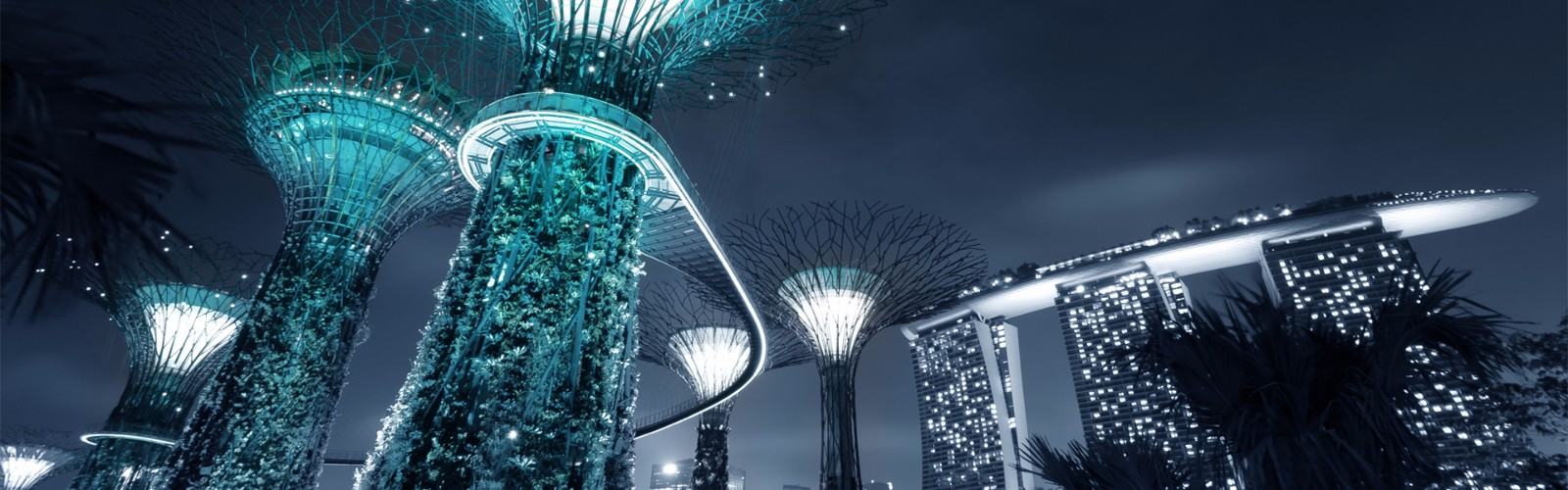 Gardens By the Bay Tour | Wendy Wu Tours