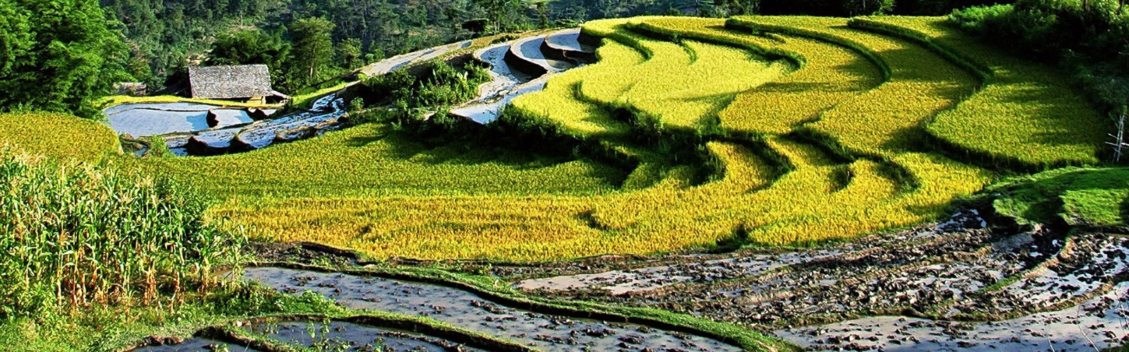 Scenic Vietnam Tour | Wendy Wu Tours