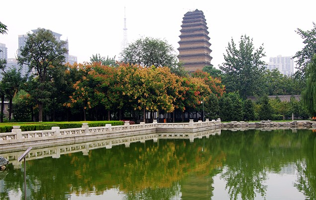 Day 10: Explore Xian, fly to Beijing