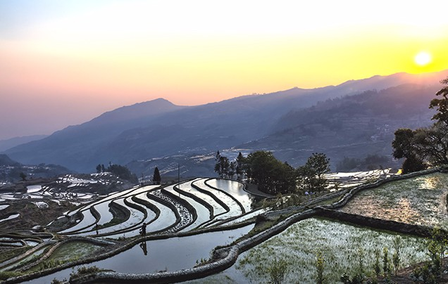 Day 14: Yuanyang rice terraces