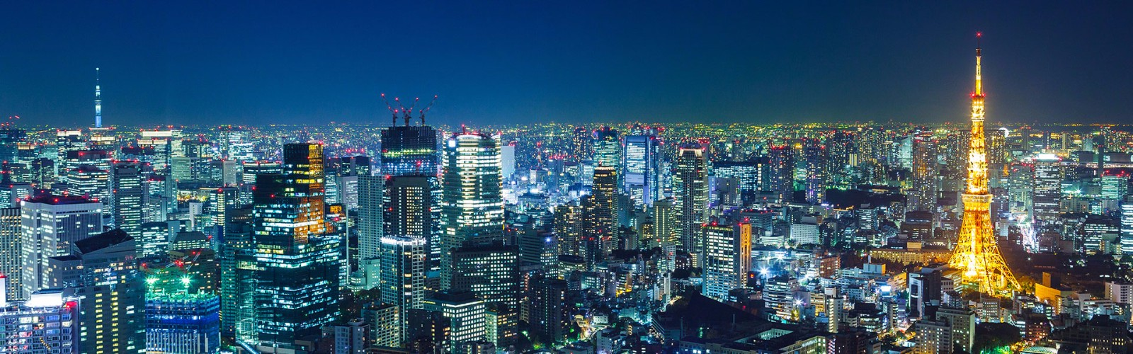 Tokyo Short Stay Tour | Wendy Wu Tours