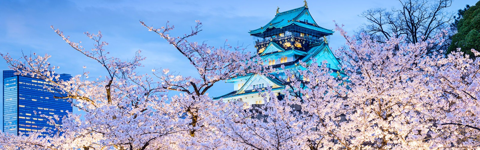 Osaka Castle Holidays