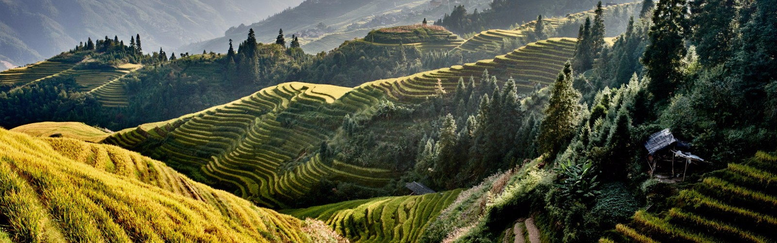 Longsheng Rice Terraces Holidays