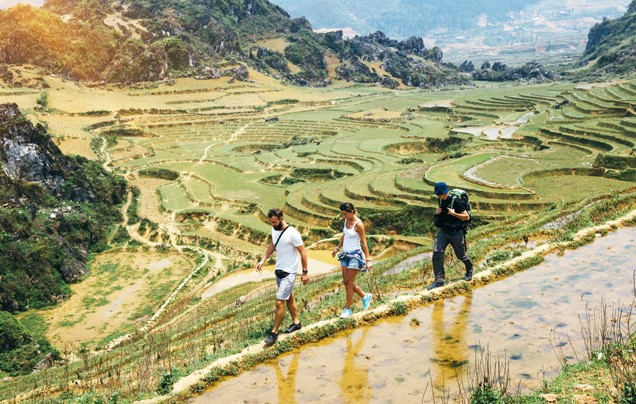 Day 15: Rice terraces